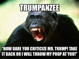 The Trumpanzees don't want to admit it, but if Donald loses, it is his fault and his fault alone.